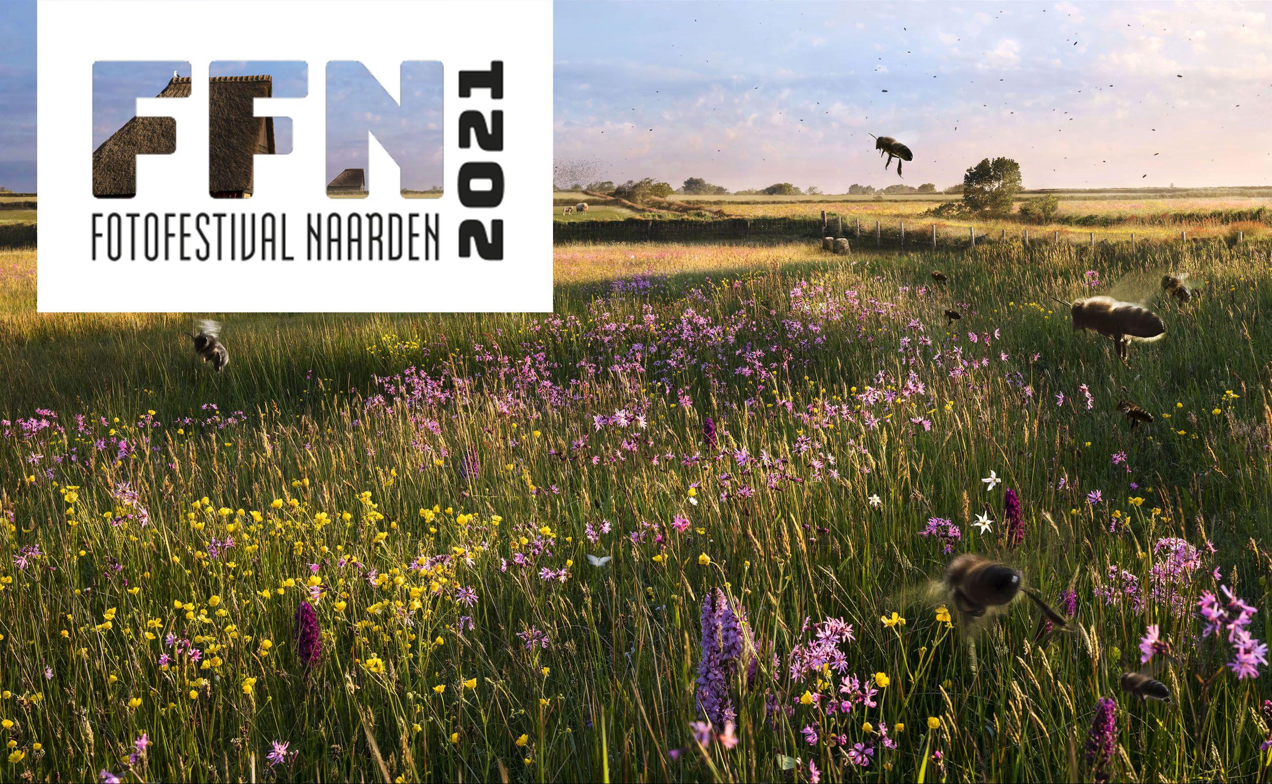 Celebrate the Dutch Landscape FFN2021